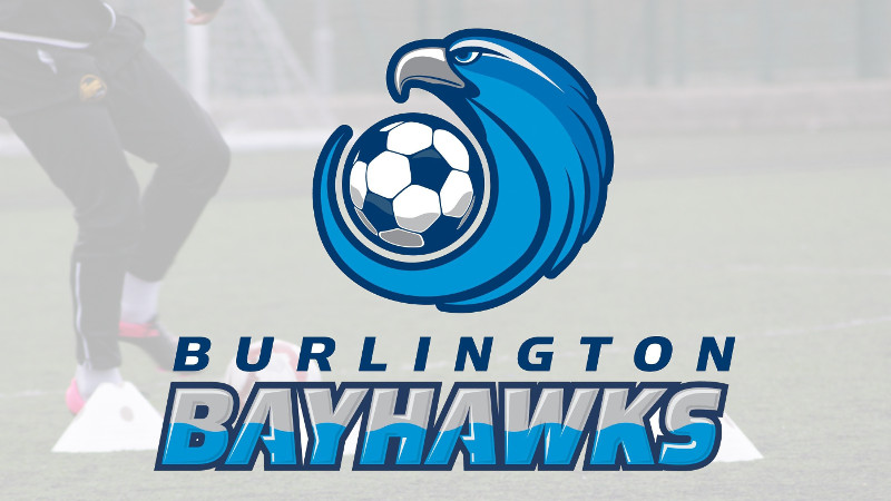 Burlington Bayhawks Banner
