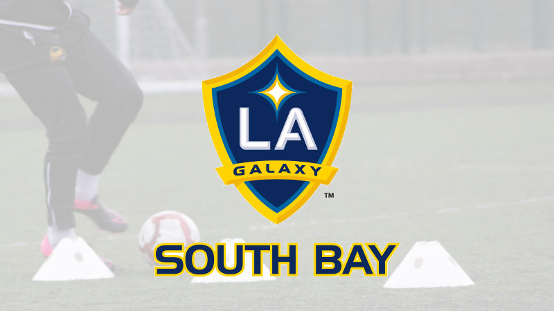 LA Galaxy South Bay Banner