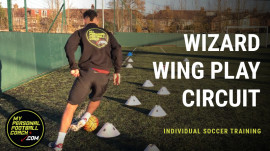 Wizard Wing Play Circuit